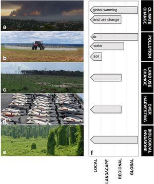 (a–e) Main anthropogenic drivers of environmental change. (a) Climate change (greenhouse gas emission by wild fires in California, USA). (b) Pollution (pesticide application in Southern Amazon, Brazil). (c) Land use change (conversion of rainforest into pasture in Southern Amazon, Brazil). (d) Overharvesting (whaling of Atlantic White-sided Dolphins in the Faroe Islands, Denmark). (e) Biological invasions (the vine kudzu growing over native vegetation, eastern USA). (f) The variable spatial extent of drivers of environmental change on local ecological entities (population, community or ecosystem). Using pollution as an example, a local ecological entity could be under the influence of local deposition of solid waste, of regional release of untreated wastewater in the drainage network upstream, or of global atmospheric pollution of carbon dioxide, nitrate, dust, and persistent organic pollutants. The typical maximum spatial extent of influence of each driver on a local ecological entity is depicted. Two different mechanisms driving 'climate change' are represented, one of global (greenhouse effect) and one of landscape-to-regional extent of influence (land use change). Figures a, d and e courtesy of Nerval (Public Domain in Wikipedia Commons), Erik Christensen (GFDL/Creative Commons; image cropped) and Kerry Britton (USDA Forest Service, Bugwood.org).