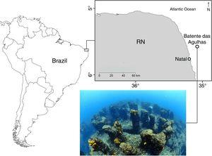 "Location of the study area ""Batente das Agulhas"". The reef is located 25 km distant from the coast of Rio Grande do Norte state, Northeastern Brazil (05°33′52′′S 35°04′21′′W)."