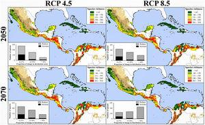Species richness patterns for avifauna associated to northern Neotropical seasonally dry forests (NSDF) projected under two representative concentration pathways of greenhouse gas concentration (RCP 4.5 and 8.5) for years 2050 and 2070 and considering the contiguous dispersal ability of species. The spatial coincidence among the NSDF' species richness patterns from present and future projections tended to decrease with time; in fact, number of areas with highest species richness values (i.e., >260 spp.) decreased (∼31%) in the future, occupying higher regions (∼250 m) above the current average elevational distribution. Inserted histograms in maps represent the number of species and their proportional change (i.e., 0–25%, 25–50%, and >50%) losing (gray) or increasing (black) in the distributional areas between current climatic conditions and future scenarios. Appendix S4 shows the maps of species richness patterns projected to future climate conditions considering the not-dispersal ability of species.