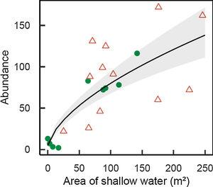 Abundance of Melanorivulus megaroni as a function of the area of shallow water in each 50-m stream section (green solid circles: streams in forested watersheds, red open triangles: streams and reservoirs in deforested watersheds). The line is that predicted by a negative binomial generalized model with random effects due to streams. The grey area shows ± 1 standard errors of the estimated values by the model, accounting for all sources of variation (fixed and random effects).