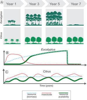 Long- and short-term changes in temporal heterogeneity in agricultural landscapes. Long-term variations are associated with land cover changes or harvest practices (A). For example, Eucalyptus plantation leads to high initial disturbance in the landscape when compared to Citrus, due to the fast growth of the trees in the initial years, increasing the resource availability for species rapidly (blue dashed line in B). After 4 to 7 years the crop is totally harvested, decreasing drastically the resources available (blue dashed line in B). Short-term changes are associated with management practices used during the crop cycle (B and C). Before harvesting, Eucalyptus may provide stable amount of resources over the years for some species, which depends on the biomass as resource (green solid line in B). This perennial crop also has an initial intense management with insecticides, followed by a decrease in their use (red dotted line in B). Thus, total resource availability depends on both the standing biomass and on insecticide use. Conversely, Citrus is also a perennial crop and may offer a stable biomass during the entire cycle (blue dashed line in C). However, in non-organic Citrus systems the continuous use of insecticides (red dotted line in C) or other management practices such as understory cleaning and pruning can lead to periodic variation in resource availability for some species (green solid line in C).