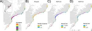 Study ecoregions eco-0, -5, -12, -16 and -18 plus the merger of the six ecoregions (eco-all) – (A), current number of species (B), and future projected species loss (C and D). A buffer of 20 km was created around the final ecoregions to fit the shapefiles and the distribution raster resolution as well as to better integrate the total area, especially the isolated and smaller ones, in more detail.