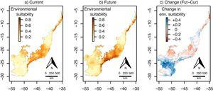 Continuous environmental suitability for Euterpe oleracea across the Atlantic Forest. (a) Current suitability; (b) future (2070) suitability; (c) change in suitability (future–current). In (c), positive (blue) and negative (red) values indicate increases and decreases in climatic suitability, respectively. (For interpretation of the references to color in this figure legend, the reader is referred to the web version of this article.)
