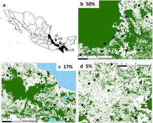Location of the three study regions in southeastern Mexico (a). We indicate the remaining forest cover (in percentage) in each region. The study forest patches are indicated in black stars. The remaining forest cover is in dark green, anthropogenic matrix in white, and water bodies in dotted blue. (For interpretation of the references to color in this figure legend, the reader is referred to the web version of this article.)