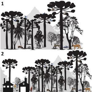 """Scheme of the Araucaria Forest System (adapted from Bogoni et al., 2020). 1. The Araucaria ecological system. The araucaria (candelabra tree) and the typical ecological system under its canopy, such as Ocotea sp. – """"Canela""""; Ilex paraguariensis – """"erva-mate""""; Dicksonia sellowiana – """"xaxim""""; and Acca sellowiana – """"goiabeira-serrana""""; and representative fauna, such as the Mazama gouazoubira – """"veado campeiro""""; Puma concolor – """"cougar""""; Dasyprocta azarae – """"cutia""""; and Cyanocorax caeruleus – """"azure Jay bird"""". 2. The Araucaria socio-ecological system. We represented the current scenario of araucaria remnants, especially in southern Brazil, where local groups (smallholders; indigenous peoples) continue to manage the system since pre-Columbian times."""