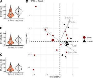 Vegetation structure and plant diversity at the Bojonawi Civil Society Reserve. (A–C) The first three Hill Numbers describing plant diversity at burned and unburned sites. Contour of violins plots provide information about the probability density of the data, boxplots within violins show median, quartiles and range. (D) Principal components analysis (PCA) that summarizes the information of the vegetation structure estimated at the study sites. Habitat variables herb=herbaceous, SubArb=subarboreal, Arb=arboreal. The biggest circle and triangle represent the centroid position in the ordination plane of burned and unburned sites.