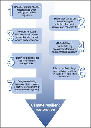 Seven areas that practitioners should consider when designing and implementing an ecological restoration project in order to build its climate change resilience.