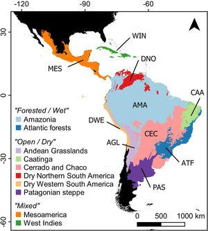 Neotropical region limits (sensu Olson et al., 2001) and ecoregion classification (sensu Antonelli et al., 2018) adopted in the analyses.