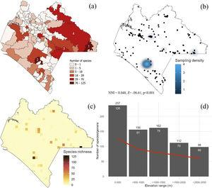 Species richness of Erebidae in Chiapas. (a) Municipalities. 1=Marqués de Comillas, 2=Ángel Albino Corzo, 3=La Independencia, 4=Ocosingo. (b) density of sampling records, (c) species richness distribution. Each grid cell is 10km2. Grids were only generated upon sampling locations. (d) Species richness along the elevational range. The red line represents the generic richness trend. Number of genera and species are indicated in white and black, respectively. NNI=Nearest Neighbor Index showing that sampling records are far to be random.
