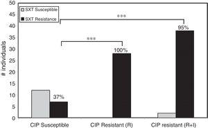 Relative risk of cross resistance in RGM. Cross-susceptibility profiles to ciprofloxacin (CIP) and sulfamethoxazole (SXT) in RGM suggest a strong correlation on the relative risk of having sulfamethoxazole resistance in isolates resistant to ciprofloxacin compared to susceptible isolates. In the fraction of the population with RGM CIP Susceptible only 37% of the individuals displayed resistance to SXT. However, in the fraction of population with RGM CIP Resistant alone (R) or combined with Intermediate resistance (R+I), 100% or 95% of the individuals also displayed resistance to SXT, respectively (*** stands for p<0.001, z-test; R, resistant; I, intermediate resistant).