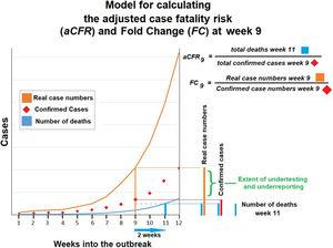 Model demonstrating adjusted case fatality risk and fold change at week 9 of the COVID-19 outbreak. Case fatality risk may surpass 100% if death tolls are higher than confirmed cases 14 days prior.