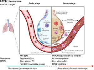 Schematic representation of the progression of COVID-19 infection and potential adjuvant interventions. IFNa: Interferon alpha; IV: Intravenous; HAS2: Hyaluronan Synthase 2. Created with BioRender.com.