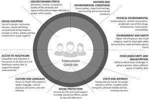 Social determinants for TB and COVID-19.