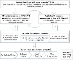 Comprehensive action flow for the social determinants of COVID-19.