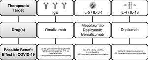 Summary of the potential main benefits of monoclonal antibodies for severe asthma treatment in COVID-19 Legend: AA: airways Ig: immunoglobulin; IFN: interferon; IL: interleukin; pDC: plasmacytoid dendritic cells.