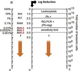 Leukemic load (BCR-ABL ratio)/baseline log reduction ratio. Adapted from: Luu at al. (2013).9 Ph+: Philadelphia chromosome; RQ PCR+: real time PCR; RHC: complete hematologic response; RCC: complete cytogenetic response; RM: molecular response; RMM: major molecular response.