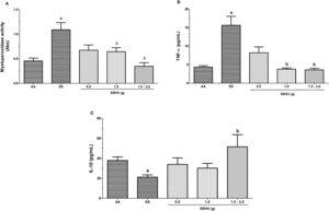 Evaluation of inflammatory markers in neutrophils of patients with sickle cell anemia (SCA) treated or not with hydroxyurea (HU). AA: Control group (healthy individuals); SS: Group of SCA patients not treated with HU; SSHU: Group of SCA patients treated with HU (in doses of 0.5g, 1.0g or 1.5–2.0g/day). (A) MPO activity. (B) TNF-α concentration. (C) IL-10 concentration. Analyses performed in triplicate for each sample. (p-value-Kruskal–Wallis and Dunn's Multiple Comparison). ap<0.05 vs AA group. bp<0.05 vs SS group.