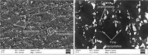 Secondary electron micrograph of as-received P91 steel (a) at lower magnification of 5000×, (b) at higher magnification of 50,000×.