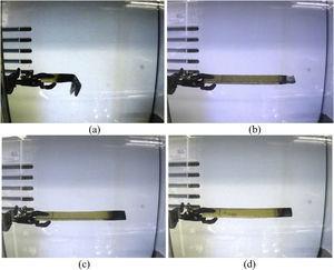 Images of all types of fabricated samples after burning test: (a) HVE-UT, (b) HVE-NaOH, (c) HVE-FR and (d) HVE-NaOH+FR.
