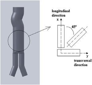 Prosthesis model and samples directions for testing.