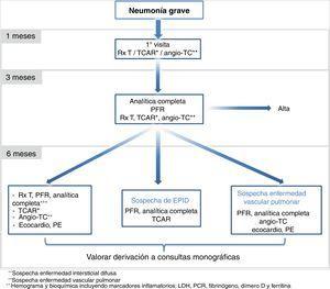 Propuesta de seguimiento de la neumonía grave por COVID-19. Angio-TC: angiografía por tomografía computarizada; PE: prueba de esfuerzo; PFR: pruebas de función respiratoria; Rx T: radiografía de tórax; TCAR: tomografía computarizada de alta resolución.