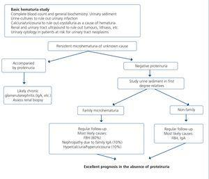 Consensus document on the management of renal disease in HIV